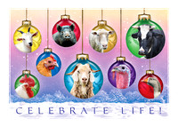 Celebrate Life! Poplar Spring Animal Sanctuary